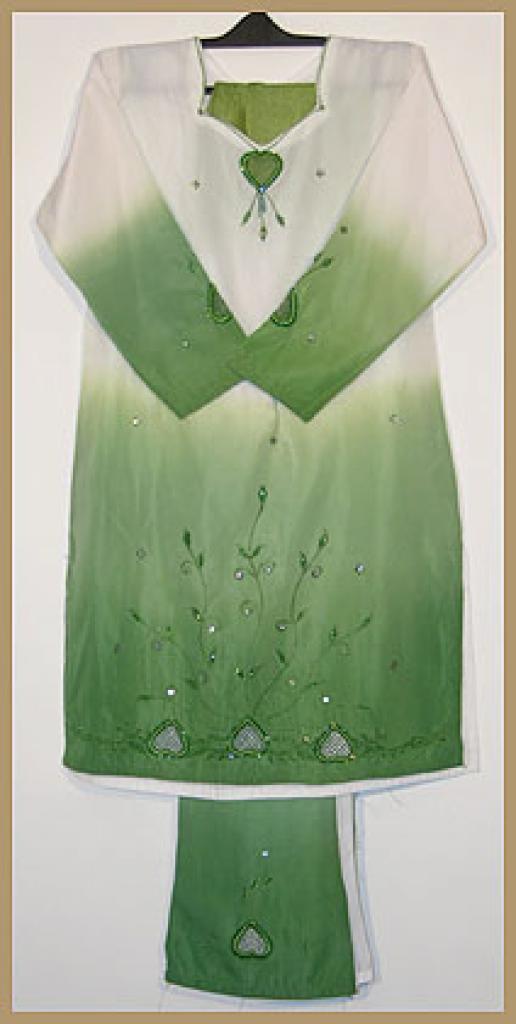 Girls Embroidered Salwar Kameez ch381