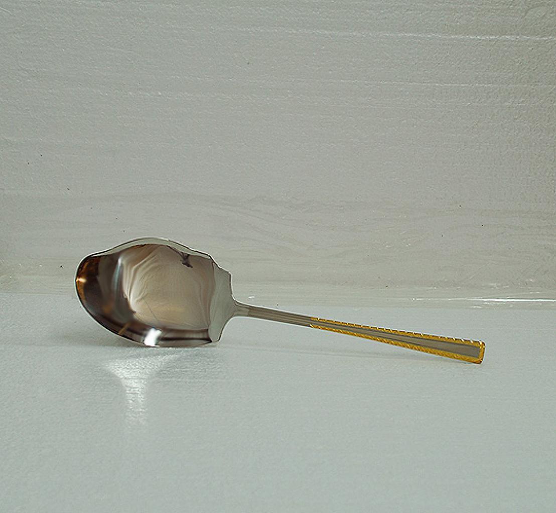 Middle Eastern - Pakastani style Serving Spoon gi593