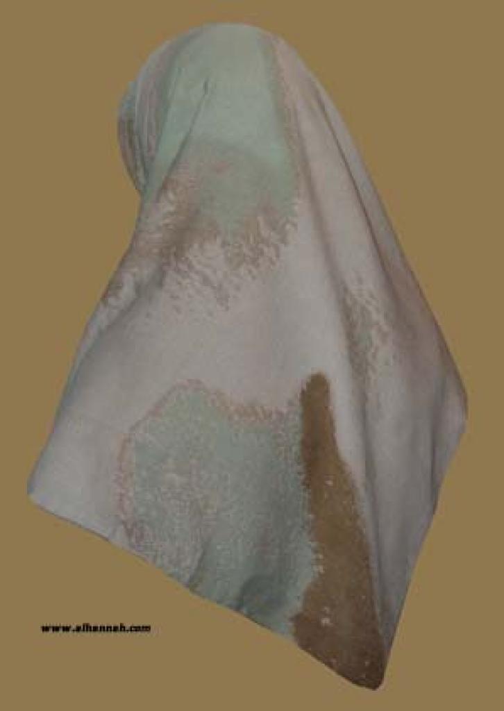 Georgette Chiffon Hijab  hi1047