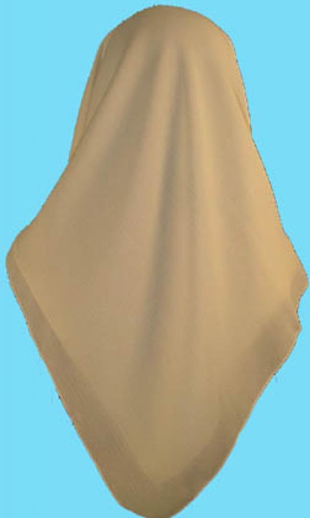 Crepe Georgette Hijab hi104