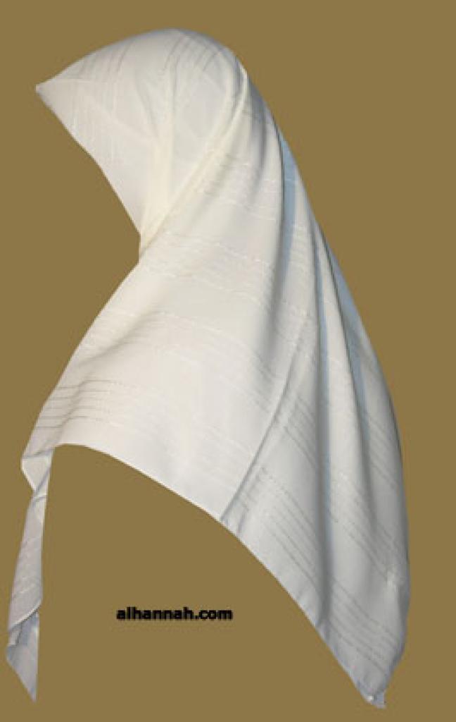 Chiffon Hijab  hi1072