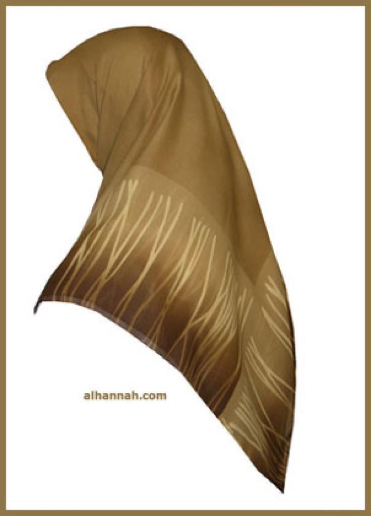 Chiffon Hijab  hi1082