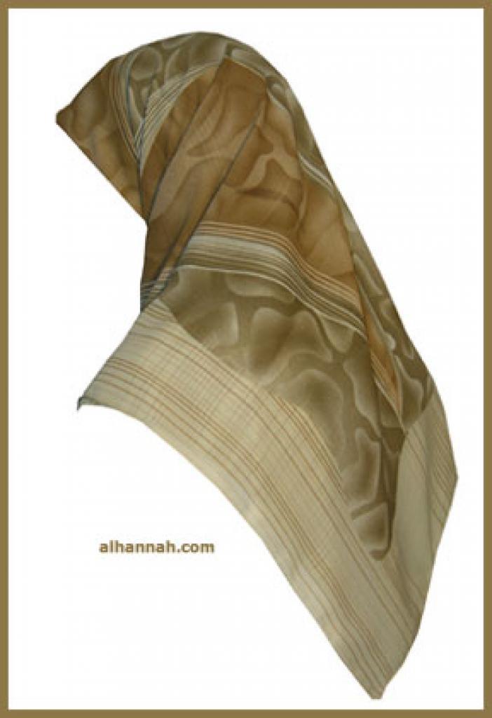 Chiffon Hijab  hi1089