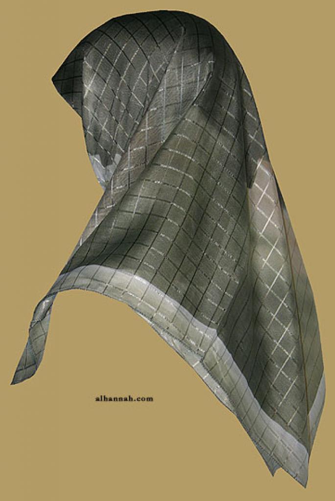 Chiffon Hijab  hi1162