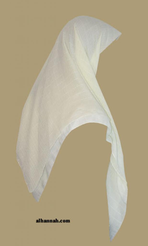 Lightweight Chiffon Hijab hi1347