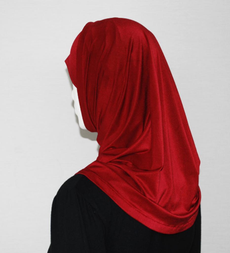 Lycra Al Amirah Shoulder Length Hijab hi1713