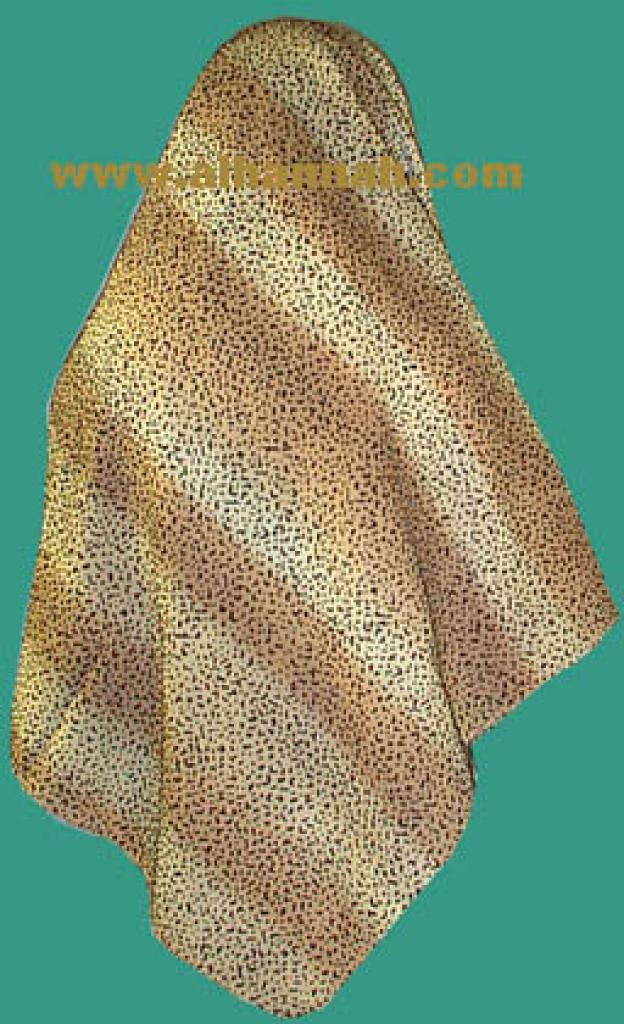 Turkish Two-Tone Velvet Mottled Hijab hi320
