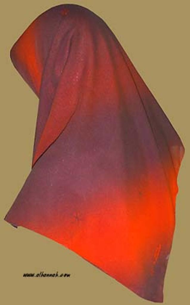 Georgette Chiffon Hijab   hi909