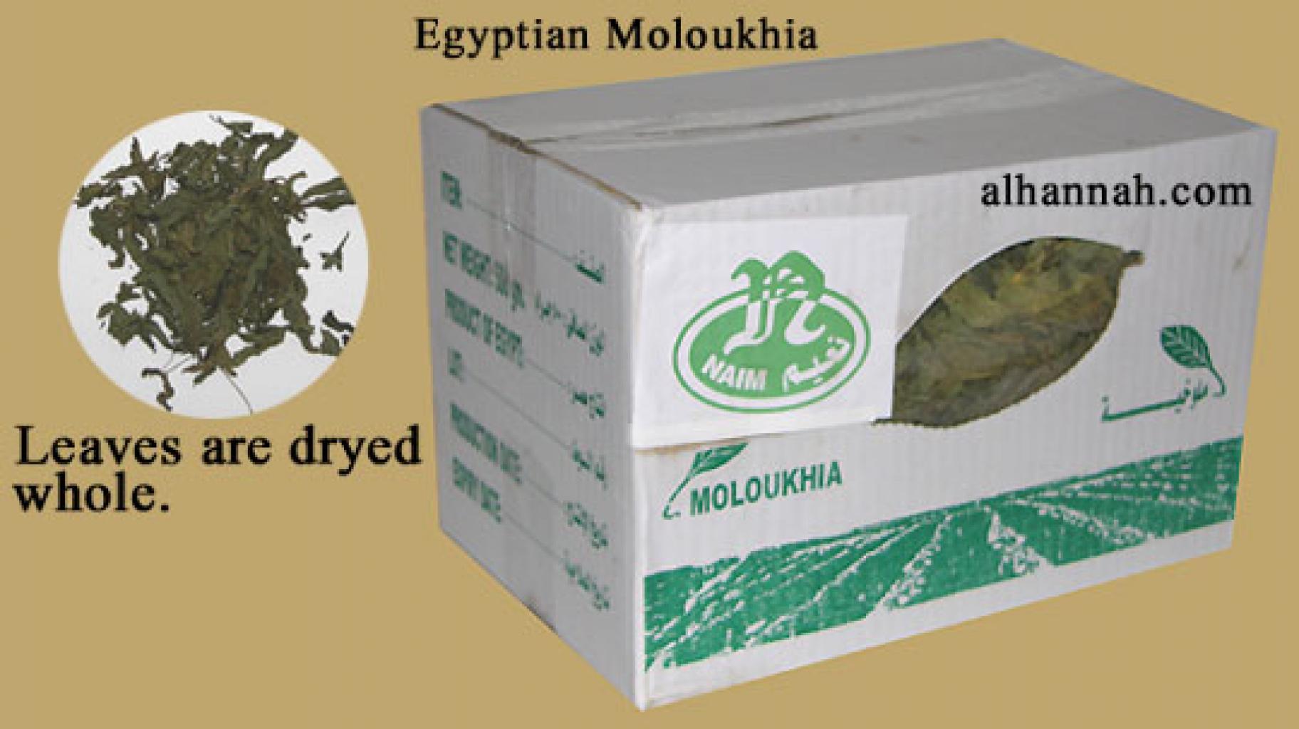 Egyptian Moloukhia in231