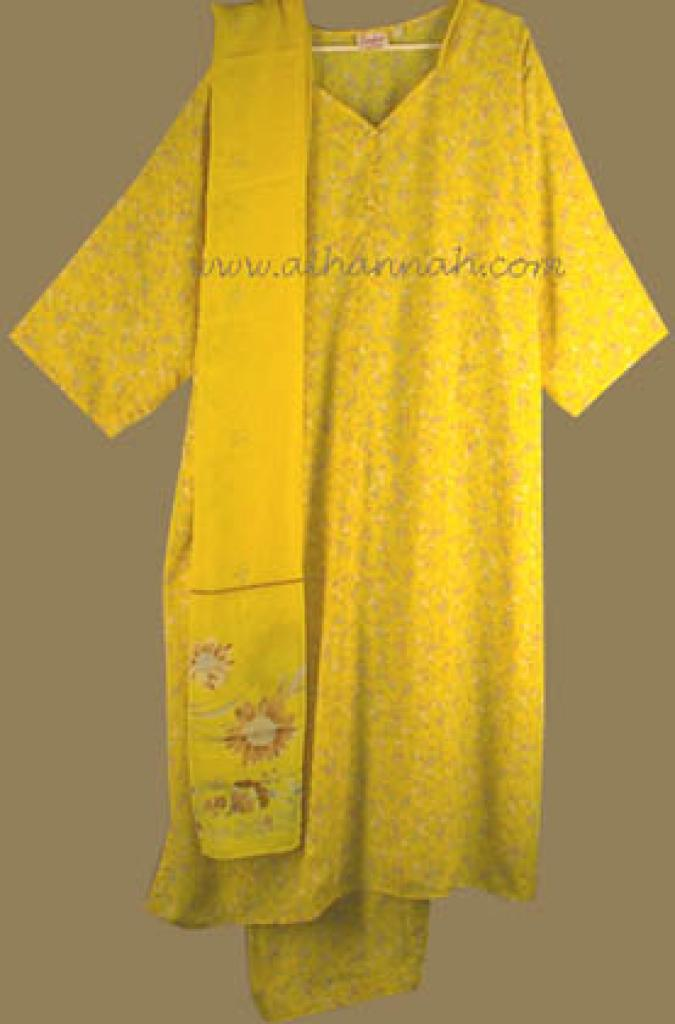 Plus Size Salwar Kameez sk467