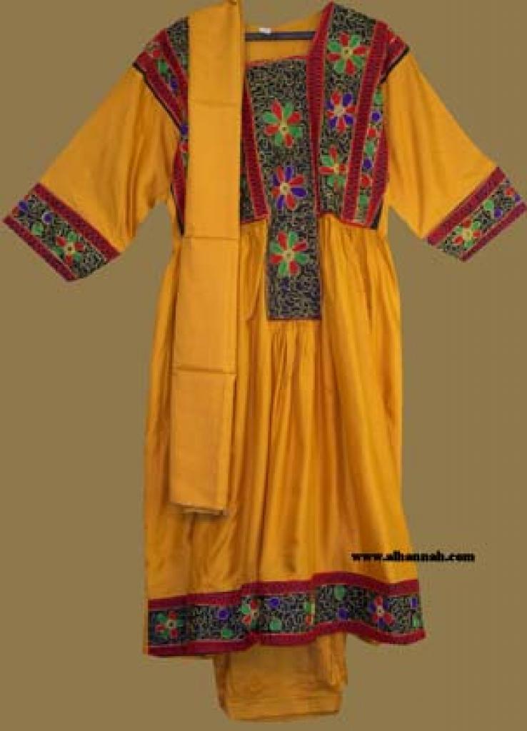 Traditional Pakistani Salwar Kameez - Petite sk889