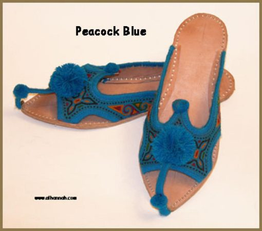 Embroidered Punjabi Shoes  sk899