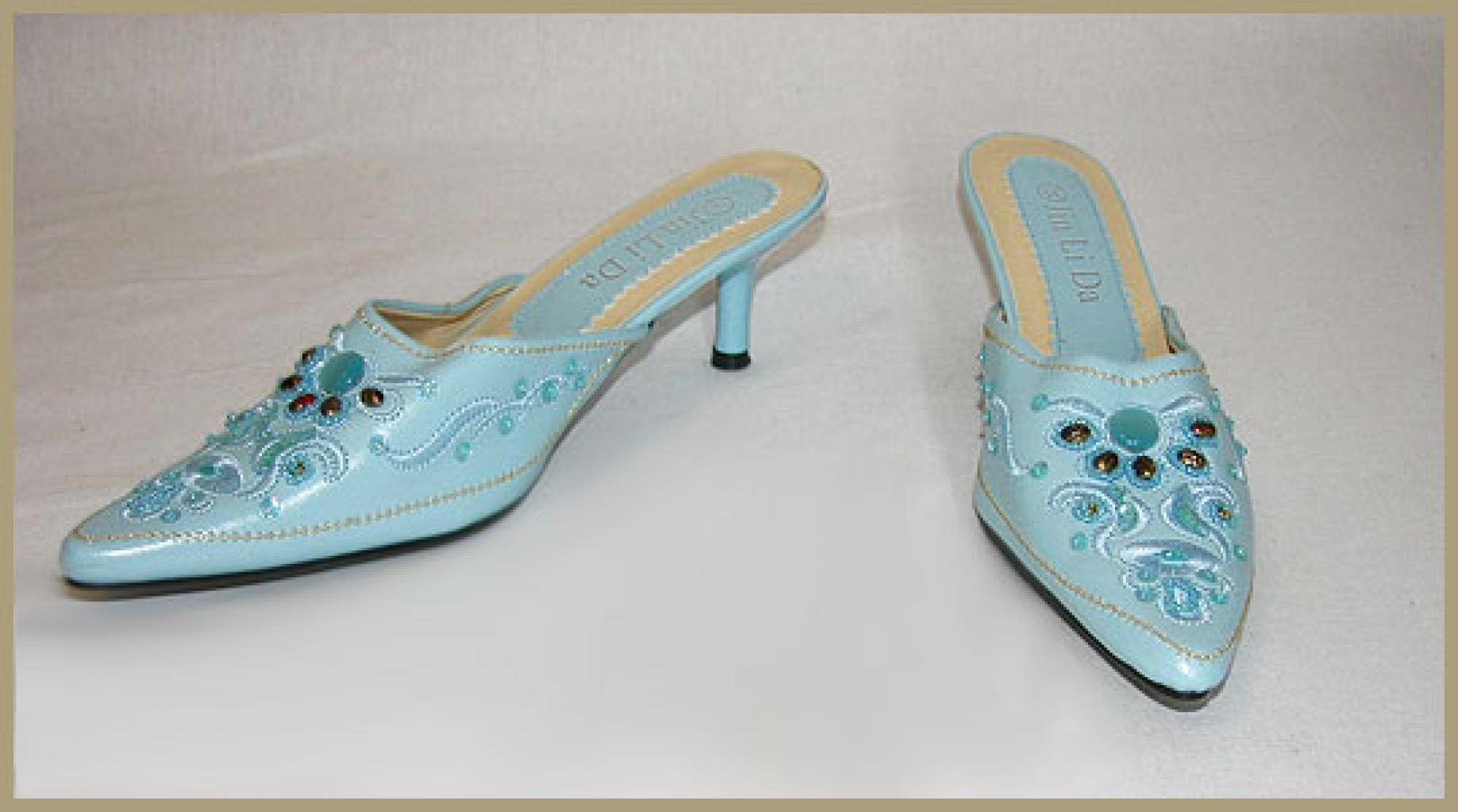 Embroidered Leather Shoes so502
