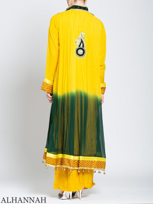 Embellished Velvet Trimmed Rhinestone Pineapple Salwar Kameez sk1245 Back